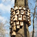 Best Way to Mount a Birdhouse